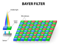 Color filter or Bayer filter. The Bayer filter RGB is commonly used in digital still cameras, camcorders, and scanners.  The Bayer filter pattern is 50% green Royalty Free Stock Image