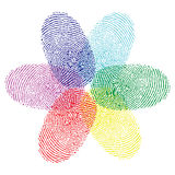 Color fingerprint flower. Illustration Stock Photo