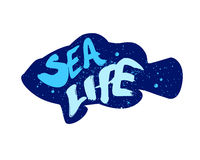 Color fish silhouette with lettering text Sea Life. Vector illustration.  Stock Photography