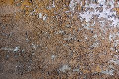 Color of flaked white and yellow ocher brown beige royalty free stock photos