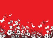 Color floral Fotografía de archivo libre de regalías