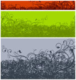 Color floral background Stock Photography