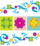 Color Floral ornament Stock Photos