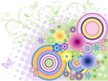 Color flower. Floral background. Stock Photos