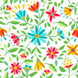 Color flower seamless pattern spring illustration Stock Photography
