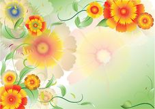 Color flowers background4 Stock Photos