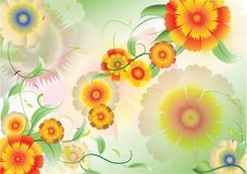 Color flowers background5 Stock Photos