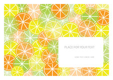 Color frame with fruits and place for your text Royalty Free Stock Images