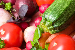 Color Fresh beautiful vegetables. yield Stock Photography