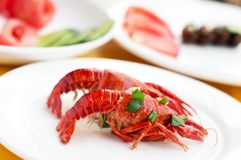 Color Fried small lobster Stock Image