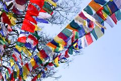 Color full prayer flags. Prayaer flags with mantras written on them are hung in the wind to spread their prayers faster in the world Royalty Free Stock Images