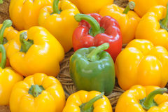 Color full sweet peppers. Royalty Free Stock Photos