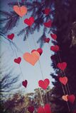 Color graded hearts blowing in the wind. Color graded hearts suspended from a tree against a blue sky blowing in the wind royalty free stock photo