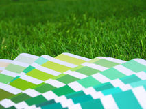 Color guide in grass. Beautiful image of color guide with green colors in green grass Royalty Free Stock Images
