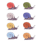 Color hand drawn snails set. Hand drawn snails in color vary set Royalty Free Stock Photography