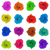 Color hearts of the roses. Many color roses in the form of heart Stock Images