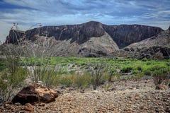 Color hermoso del desierto foto de archivo libre de regalías