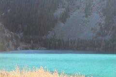 Color hermoso increíble del ` s del agua con luz del sol en superficie Fotos de archivo libres de regalías
