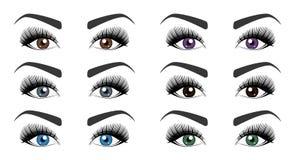 Color of human eyes. Set of open female eyes with beautiful long eyelashes and stylish eyebrows isolated on white background. Fashion makeup. Vector Stock Image