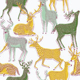 Color illustration of deer Royalty Free Stock Photo