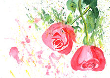 Color illustration of flowers in watercolor paintings Stock Photo