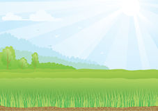Illustration of green field with sunshine rays and. Color Illustration of green field with sunshine rays and blue sky Royalty Free Stock Photos