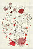 Color illustration of heart on a sheet of student notebooks Stock Images