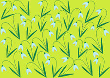 Color illustration of snowdrop flowers Stock Image