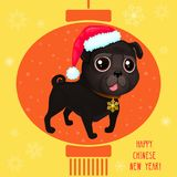 Greeting card for Сhinese New year with a cute black pug. Color illustrations with catoon dog in Santa`s hat. Background with Chinese lantern and snowflakes Vector Illustration