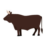 color image with brown bull Stock Image