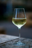 Color image of chilled white wine in a glass , with copy space. Royalty Free Stock Photo