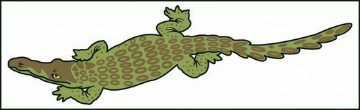 CROCODILE  PREDATORY ANIMAL. Color image of a large predatory amphibian crocodile animal with large jaws stock illustration