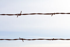 Simple Barbed Wire Abstract Royalty Free Stock Photography