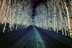 Color Inverted Snow Covered Rural Road Royalty Free Stock Photo