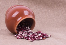 Color kidney beans in a bowl Stock Image