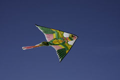 Color kite Stock Photography