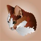 Color kitty head vector. Kitty three color head pussy feline vector illustration Stock Image