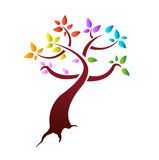 Color leaves tree illustration design Royalty Free Stock Images