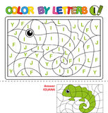 Color by letter.  Puzzle for children. Iguana Royalty Free Stock Image