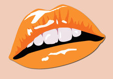Color Lips. Sexy Color Lips with orange lipstick Stock Photography
