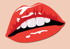 Color Lips. Illustration of Sexy Red Color Lips Royalty Free Stock Photography