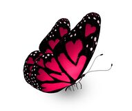Color love-butterfly with hearts in the wings