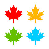 Color maple leaf vector icon Royalty Free Stock Photo