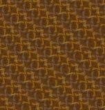 Color marrón del modelo Imagen de archivo libre de regalías
