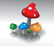 Color mushrooms. Stock Photos