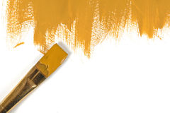 Color of mustard hand-painted daub with paint brush. Color of mustard gouache hand-painted daub with used paint brush Royalty Free Stock Image
