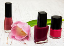 Color nail polish and tulips Stock Photography