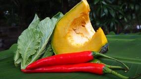 Color natural de verduras Imágenes de archivo libres de regalías