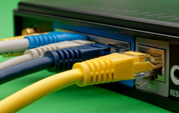 Color network cables plugged into a route Royalty Free Stock Images