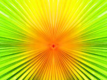 Color and noise Abstract Back ground motion blur zoom from palm Royalty Free Stock Image